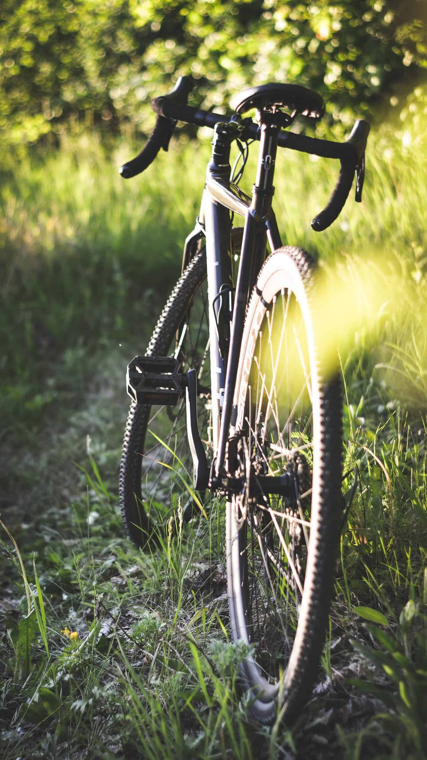 The tyres you chose depend on what you are going to use your road bike for